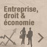 Droit et économie : occasion