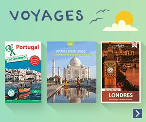 Guides de tourisme et livres de voyages