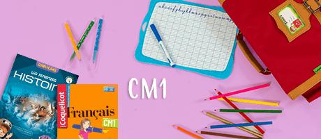 Livres et TD scolaires CM1